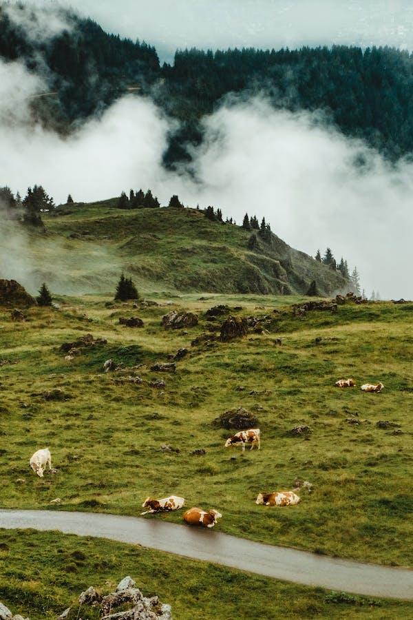 Hiking In Austria | Ridestore Magazine