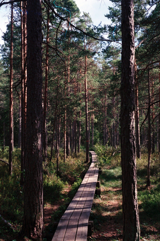 best trails in sweden