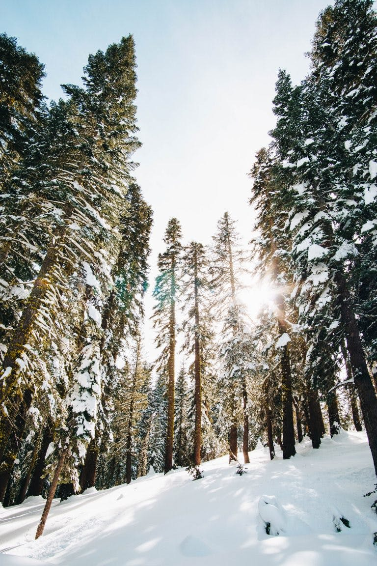 Is snowshoeing an expensive hobby