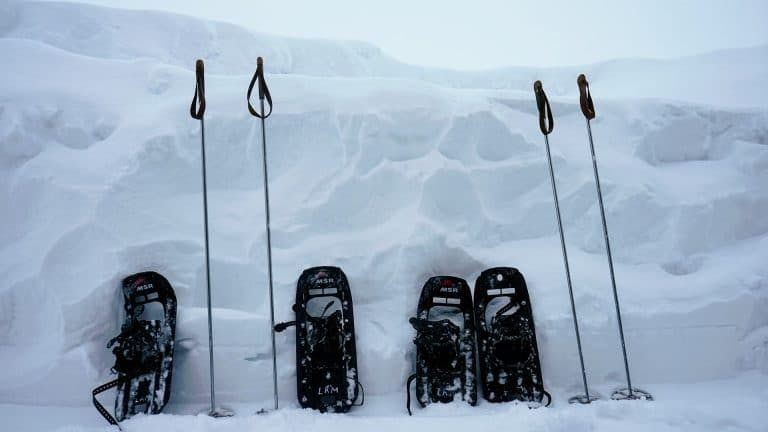 Other snowshoe types