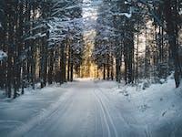 cross-country-skiing-ridestore-magazine