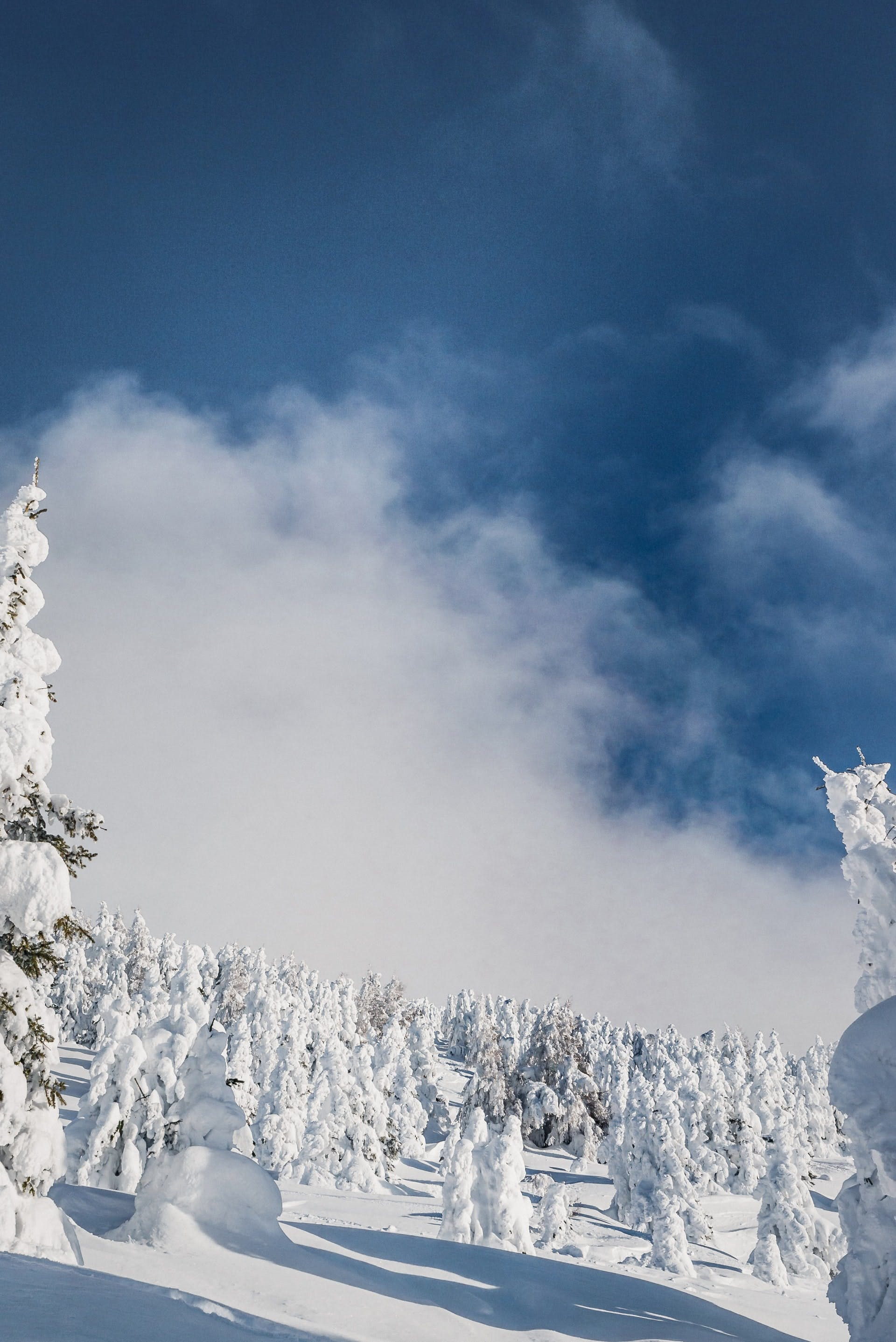 best ski passes around innsbruck