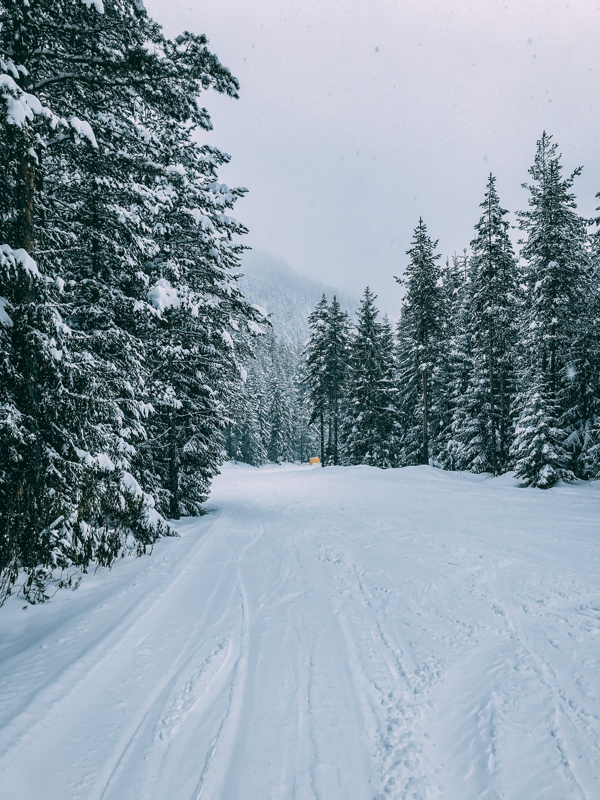 are bulgarian ski holidays as cheap as they say